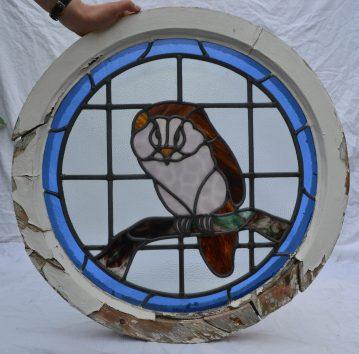 R779 owl (10)