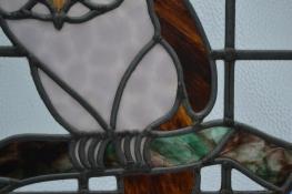 R779 owl (12)